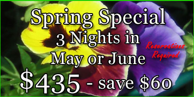 Spring Special - Save Money!